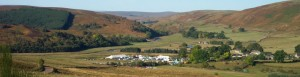 Alwinton Border Shepherds Show @ Alwinton Showground | Alwinton | United Kingdom
